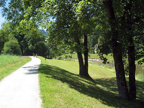 pretty path aong the Sihl